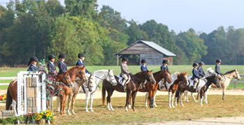 Image for Henry County Saddle Club Volunteer Day