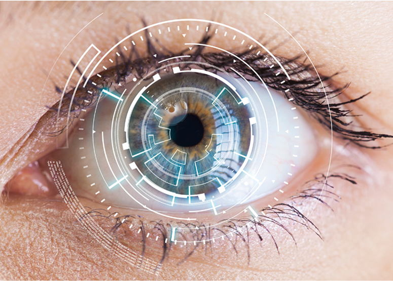 Image for Neuro-Optometry