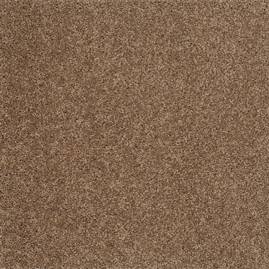STANDARD GO SOFTLY KODIAK BEAR CARPET