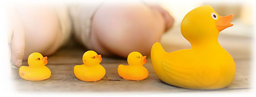 Yellow ducks in a row