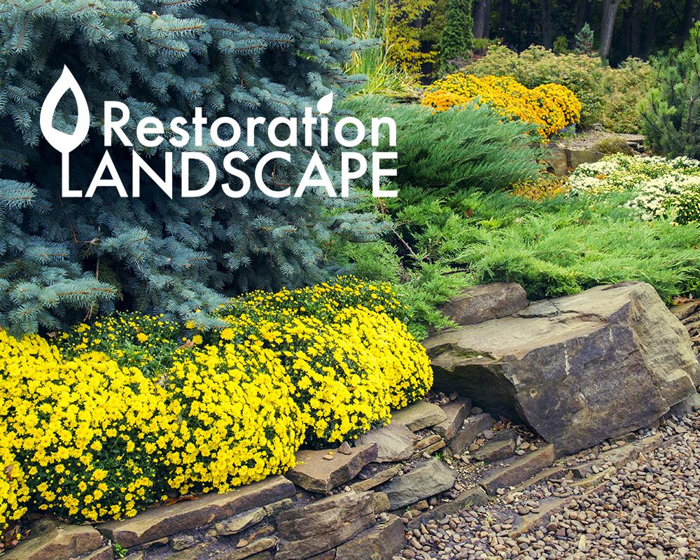 Restoration Landscape