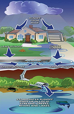 Stormwater image journey