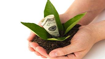 Image for Money Market