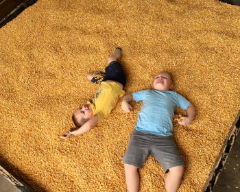Hayrides, corn mazes and more