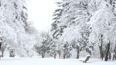 Image for Winter Break Readiness