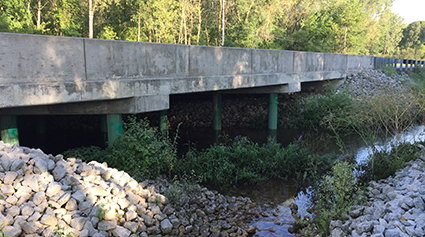 Image for Replacement of Lake County Bridge No. 306 on Broad Street Over Turkey Creek