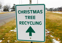 Christmas Tree Recycling at Local Parks Until Friday January 12th