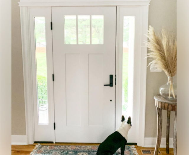 Dog at home door