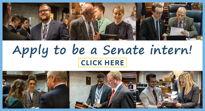 2022 Senate Internship Opportunities
