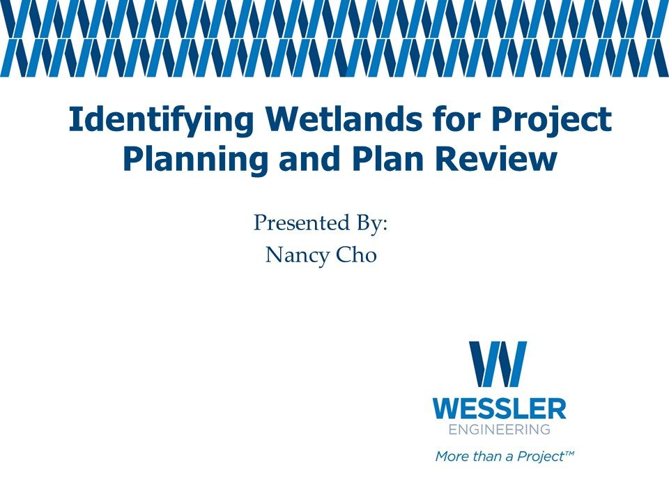 MS4 Training - Identifying Wetlands for Project Planning and Plan Review