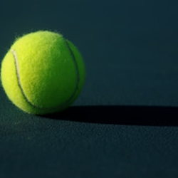 Image for Tennis Ball Self Massage