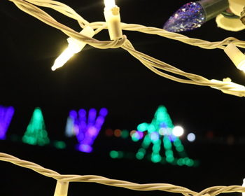 Where to See Holiday Light Displays