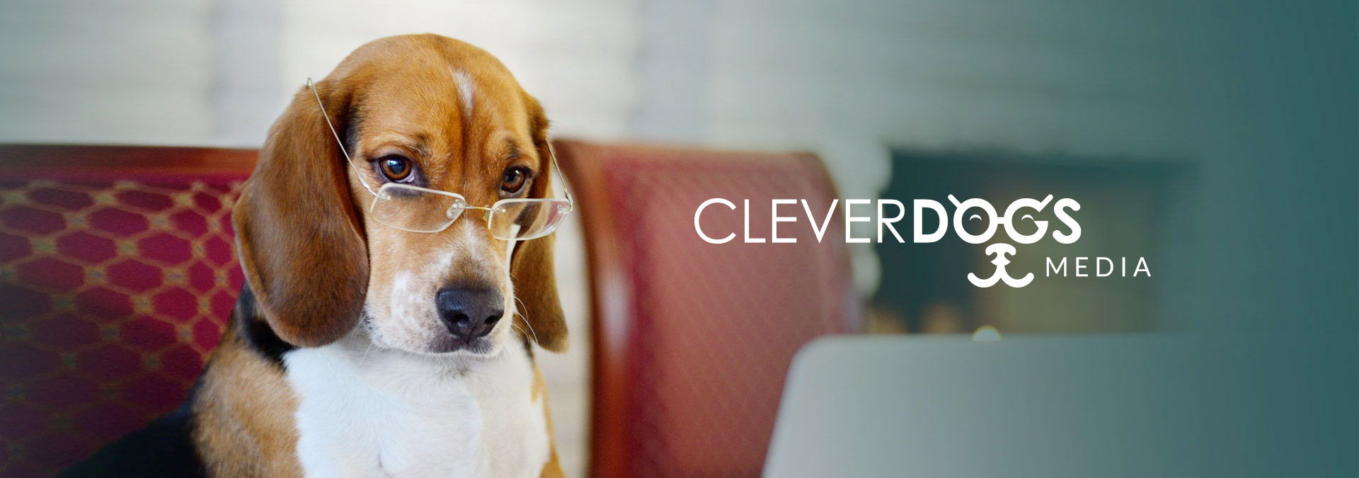 Clever Dogs Media Banner