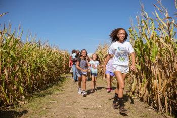 Fit at the Farm 5K Run/1 Mile Walk