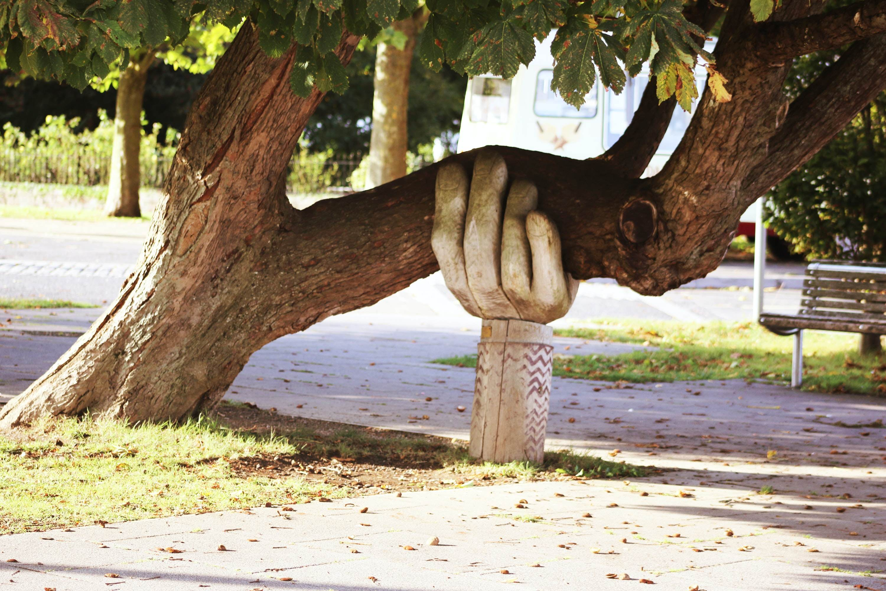 Large carved wooden hand holding up a large tree branch
