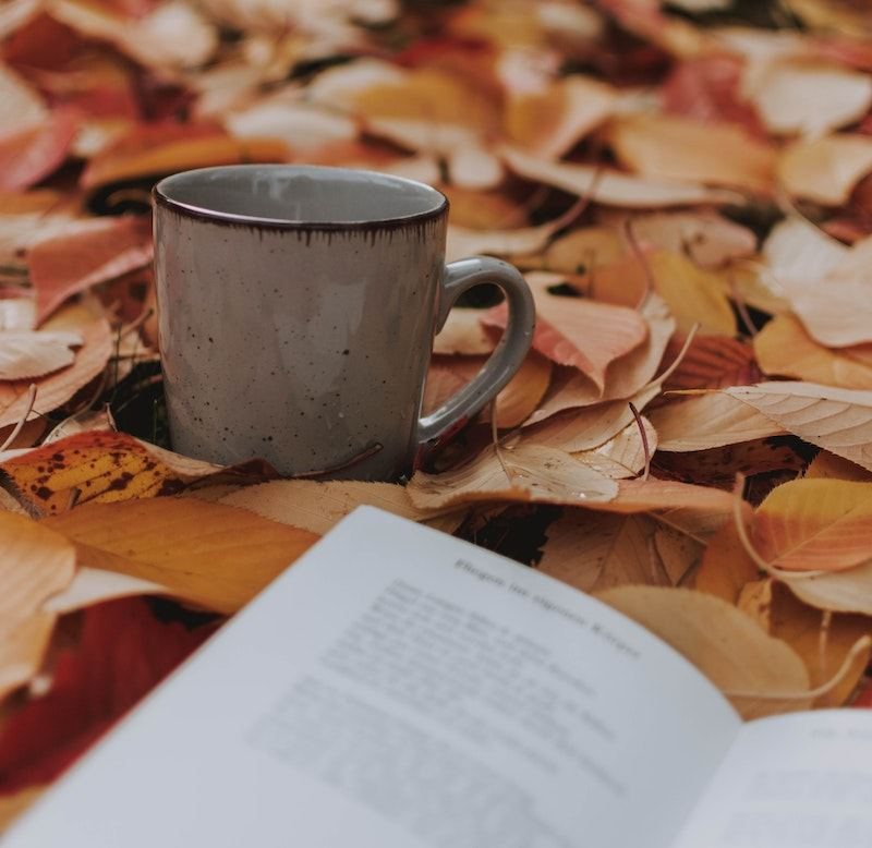 Mug and book on a bed of leaves