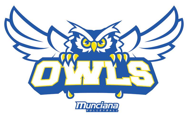 Logo for Owls