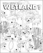Who lives in a Wetland PDF cover