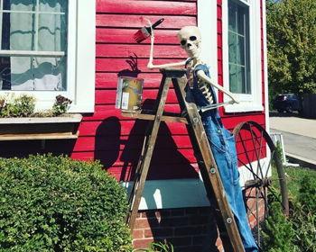 Skeletons Take Over Downtown Franklin