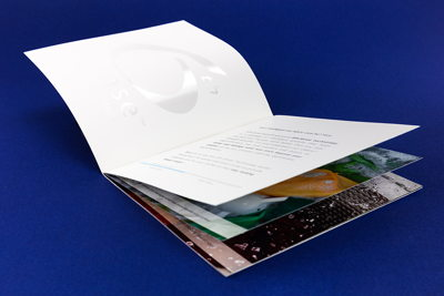 Multi-page Brochure with Gloss Logo