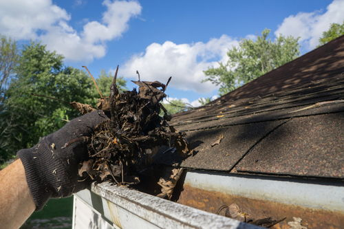 Image for Gutter Cleaning