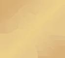 workshop yellow icon