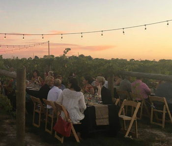 Sunset Vineyard Wine Dinner