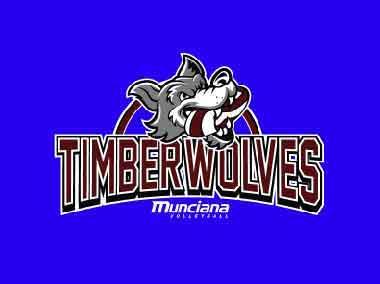 Logo for Timberwolves