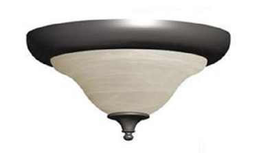 OPTIONAL FLUSH CEILING LIGHT-BRONZE
