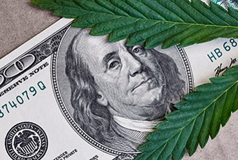 Image for Marijuana: Boondoggle Or Serious Investment?