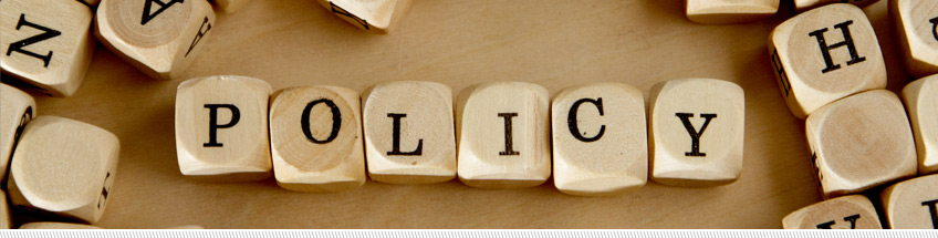 the word policy spelled out on individual wooden dice with letters on them