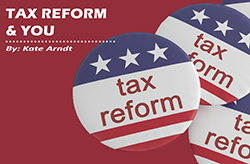Image for Tax Reform and You
