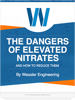 Dangers of Elevated Nitrates and How to Reduce Them
