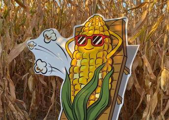 Jenkins Farm Market's Corn Maze & Pumpkin Patch