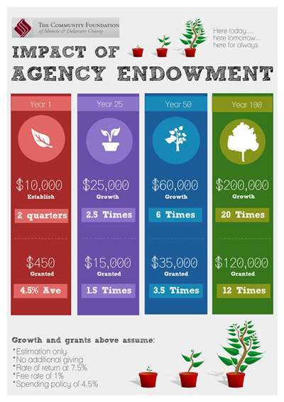 Impact of an Agency Endowment