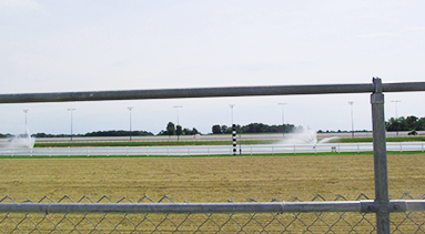 Image for Hoosier Park Casino and Horse Track