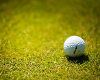 Birdies and Paws Charity Golf Outing
