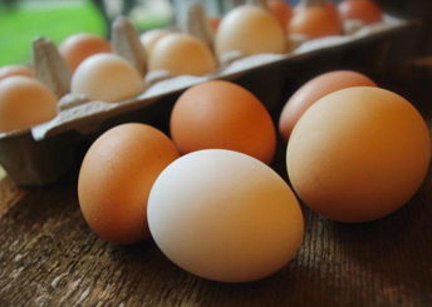 Walker's Finest Eggs