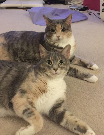 G | Mimi & Gretchen