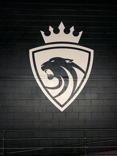 Denver Public Schools Mascot Graphic