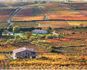 Wine Tasting and learn about Spain and Portugal trip