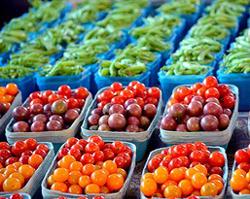 bushels of vegetables