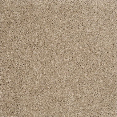STANDARD GO SOFTLY PUEBLO CARPET