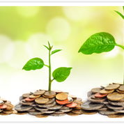 Image for Sow Your Investment Seeds