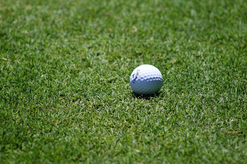 Tameka Woods Golf Course
