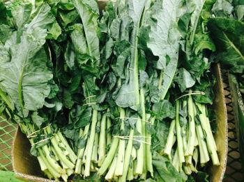 Whiteland Farmers Market & More