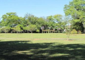 Irwin Park campsites