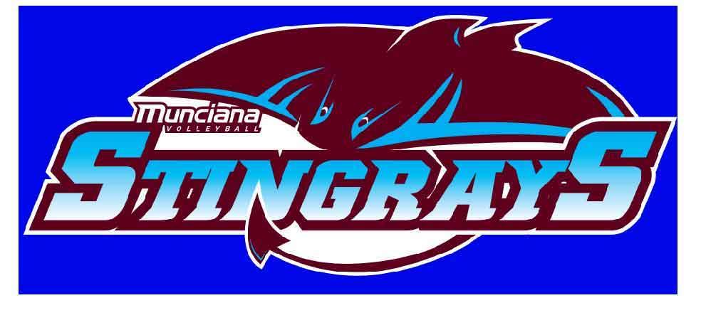 Logo for Stingrays