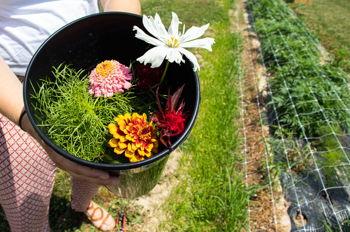 Summer Time Bouquet Making Class