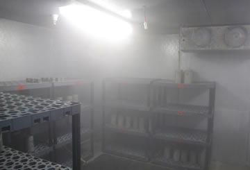 Proper concrete storage moist room example